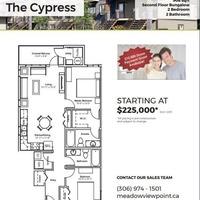 Medium cypress1fp