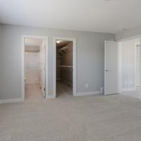 Medium interior 13