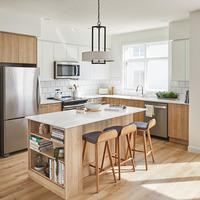 Medium goodwin gallery kitchen