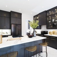 Medium aurora new home open concept kitchen