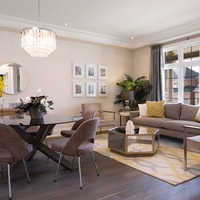 Medium new home open dining living room