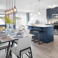 Medium kitchen dining room cadenza edmonton