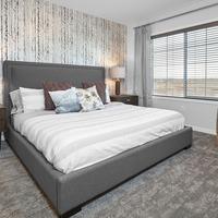 Medium master bedroom cadenza edmonton